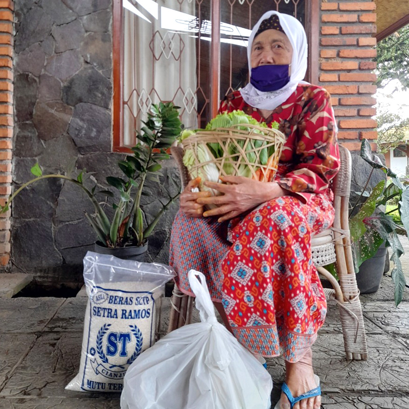 DONATE Vegetables & Rice