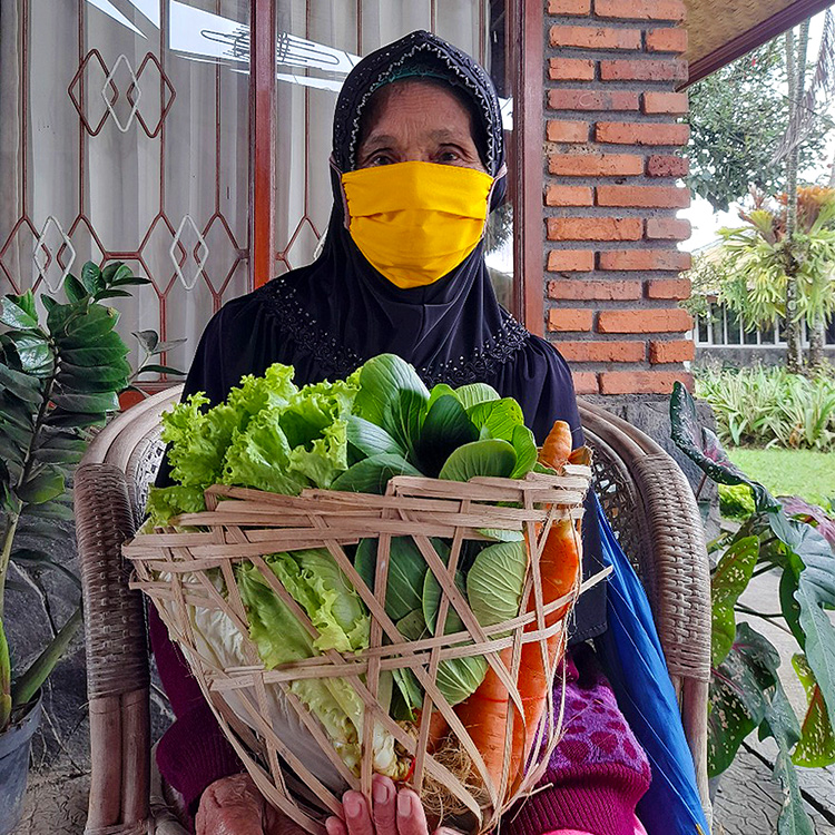 DONATE Vegetables
